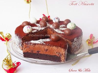 Tort-Mascota-1