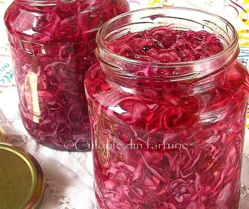 Varza-rosie-tocata-in-otet1