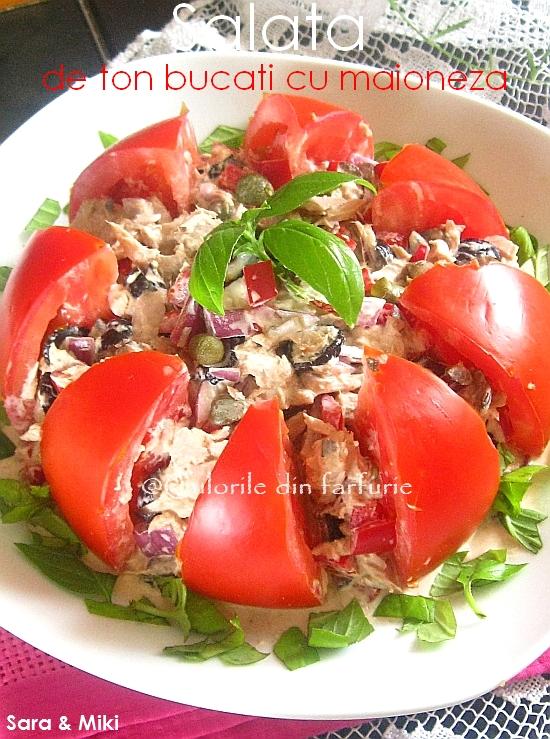 Salata-de-ton-bucati-cu-maioneza1
