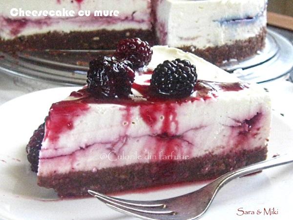 Cheesecake-cu-mure-4-1
