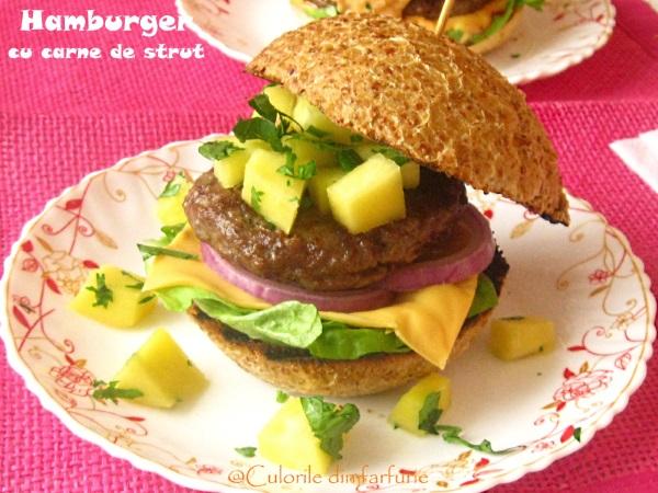 hamburger-cu-carne-de-strut-3-1